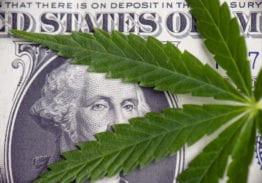 Marijuana Business Banking 2019: Cannabis Banking, BSA Legislation and Regulatory Outlook