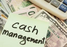 Treasury Cash Management: Ensuring Profitability while Effectively Managing Your Risks