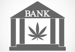 Taking the Stigma Out of Banking Marijuana Related Businesses (MRBs) – Policies, Procedures, and Best Practices
