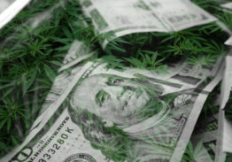 Lending to Hemp, CBD and Cannabis Banking Customers: Opportunities, Challenges and Regulatory Hurdles